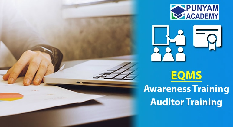 EQMS Auditor Training PPT Presentation Kit